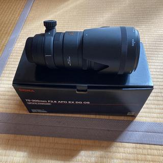 シグマ(SIGMA)のSIGMA APO70-200F2.8EX DG OS HSM/N(レンズ(ズーム))