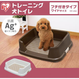 Richell - 犬★トイレトレーニング★ワイド