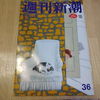 週刊新潮 9月23日号 最新号(ニュース/総合)