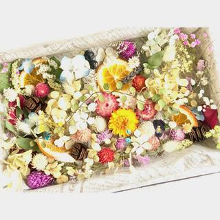 ドライフラワー花材セットNo.262⁑カラフルバラエティー❇︎盛り沢山(ドライフラワー)