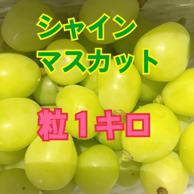 山梨県産シャインマスカット粒 食品/飲料/酒の食品(フルーツ)の商品写真