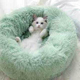ペットマット クッション猫犬用ベッド グリーン 外径60CM(かご/ケージ)