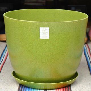 エコフォームズ自然素材のエコ植木鉢【10号ポット&ソーサーセット】アボカド(プランター)