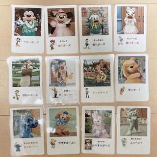 ディズニー(Disney)のゆりりん様専用 結婚式 ディズニー ポーズカード(フォトプロップス)