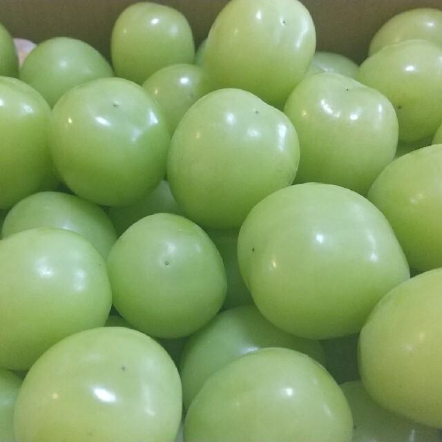 シャインマスカット(粒)  約1kg 食品/飲料/酒の食品(フルーツ)の商品写真
