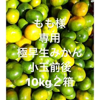 もも様 専用 愛媛県産 極早生みかん 小玉前後 傷スレあり 10kgx2箱(フルーツ)