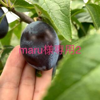 maru様専用2(フルーツ)
