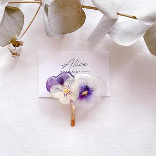 【280】ビオラの押し花のポニーフック