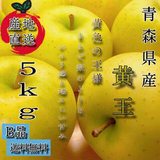 青森産  黄王 リンゴ 家庭用  5kg  農家直送 送料無料 家庭用(フルーツ)