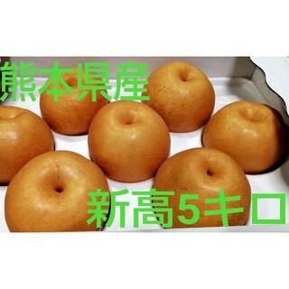 熊本県産新高梨約5kg(フルーツ)