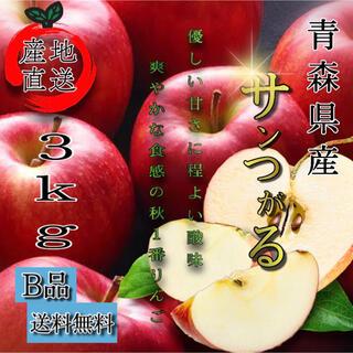 青森産  サンつがる りんご 家庭用  3kg  農家直送 送料無料 家庭用(フルーツ)