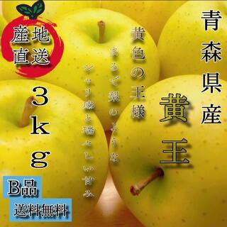 青森産  黄王 りんご 家庭用  3kg  農家直送 送料無料 家庭用(フルーツ)