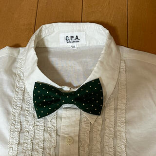 蝶ネクタイ 緑×金ドット(ファッション雑貨)