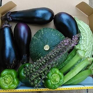 カボチャ入り【数量限定】お野菜詰め合わせ 1㎏