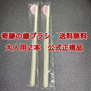 【数量限定!大人用2本 】奇跡の歯ブラシ 【送料無料】公式正規品 山型カット