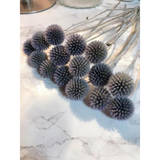 瑠璃玉アザミベッチーズブルー❣️ドライフラワー ハンドメイドのフラワー/ガーデン(ドライフラワー)の商品写真