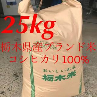 【R2年度古米・玄米】指定有料農地で採れた栃木県産ブランド米コシヒカリ 25kg