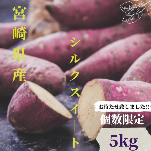 【宮崎産】さつまいも シルクスイート5.0kg送料無料 食品/飲料/酒の食品(野菜)の商品写真