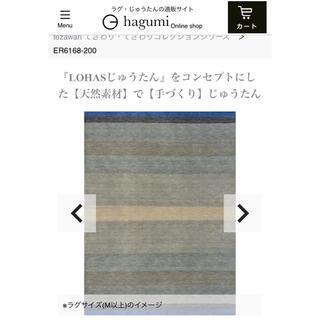 ACTUS - 【未開封新品】ハグみじゅうたん ER6168-170 てざわり コレクション
