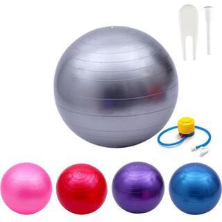 バランスボール 65cm グレー フットポンプ //bo5(エクササイズ用品)