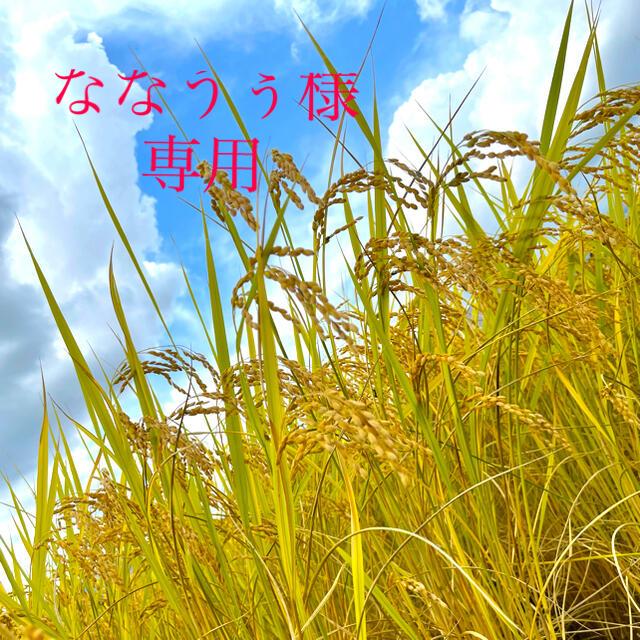 ななうぅ様 専用 食品/飲料/酒の食品(米/穀物)の商品写真