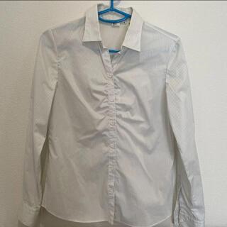 スーツカンパニー(THE SUIT COMPANY)のTHE SUIT COMPANY ストライプシャツ(シャツ/ブラウス(長袖/七分))