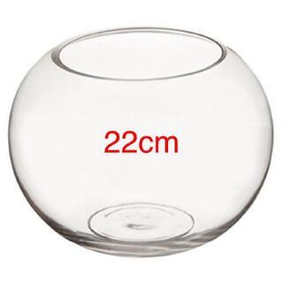 新品訳ありC 金魚鉢 透明 花瓶 アクアリウム テラリウム ミニ ビッグ