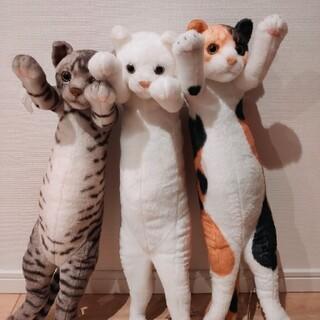 SEGA - (新品)猫コラぬいぐるみ3体セット