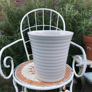 全国送料無料 【大型深鉢】植木鉢 白鉢 陶器鉢 信楽 ガーデニング 寄せ植え(プランター)