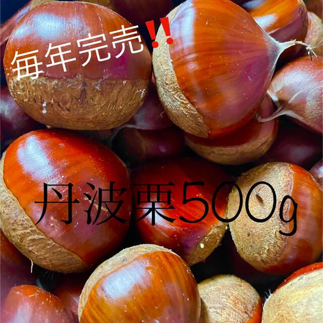 丹波栗 500グラム 食品/飲料/酒の食品(野菜)の商品写真