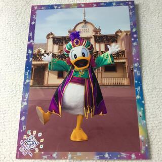 ディズニー(Disney)のスペフォ ハロウィン ドナルド ディズニー(印刷物)