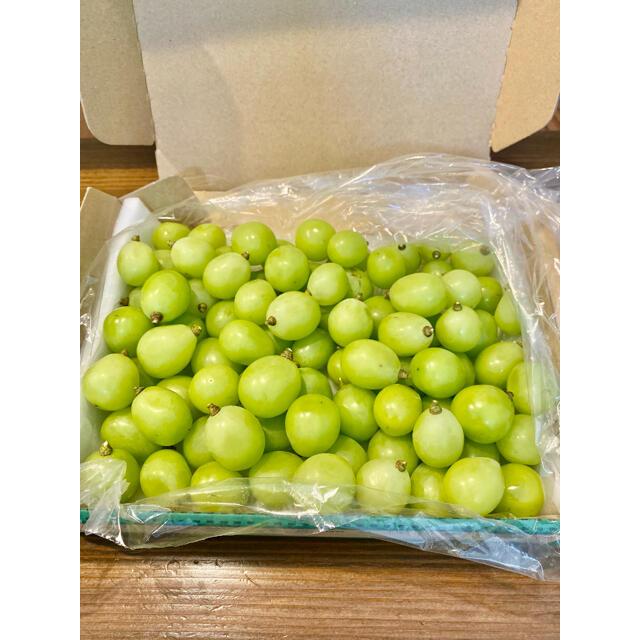 山梨県産 新鮮 美味しい シャインマスカット たっぷり1kg以上入っています!! 食品/飲料/酒の食品(フルーツ)の商品写真