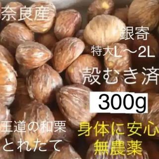 無農薬の銀寄生栗約350gを殻むき済特大300g 渋皮煮用(フルーツ)