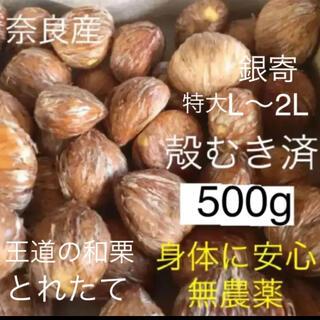 無農薬の銀寄生栗約600gを殻むき済特大500g 渋皮煮用(フルーツ)
