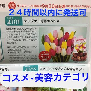 サカタのタネ 株主優待 チューリップ 球根50球 ミックス ロクシタン 美容液