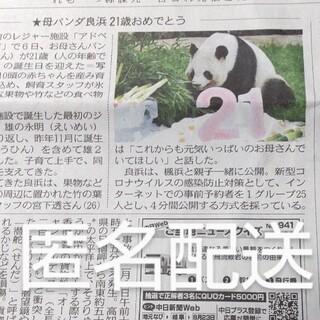 パンダ 良浜 21歳 2021.9.7 誕生日 新聞 匿名(印刷物)