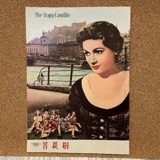 映画パンフレット「菩提樹」1956年(印刷物)