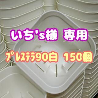 【スリット鉢】プレステラ90白150個 多肉植物 プラ鉢(プランター)