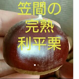 1Kg 笠間の完熟利平栗☆生栗