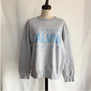 カルバンクライン(Calvin Klein)のCalvin Klein カルバンクライン ロゴスウェット (トレーナー/スウェット)