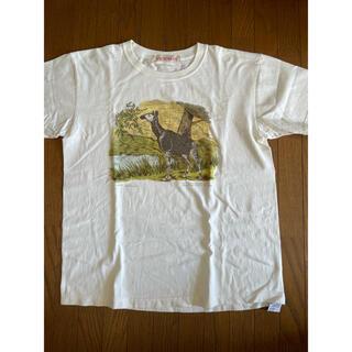 COMOLI - NICENESS(ナイスネス)  BERNARD NNビンテージ珍獣Tシャツ