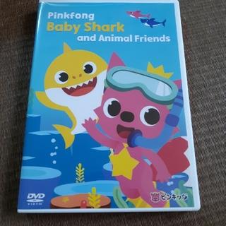 ピンキッツ Pinkfong Baby Shark and Animal