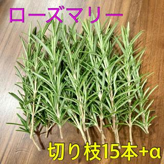 ローズマリー【切り枝15本】フレッシュ(その他)