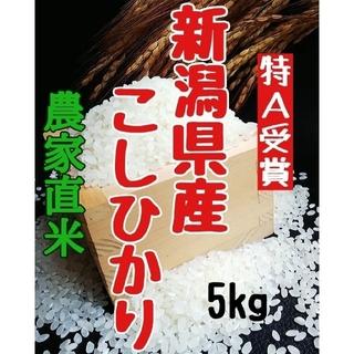 農家直送  新潟県産コシヒカリ白米5㎏(令和2年産)