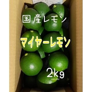 【送料無料】マイヤーレモン☆国産レモン グリーンレモン / 箱込み 2キロ(フルーツ)
