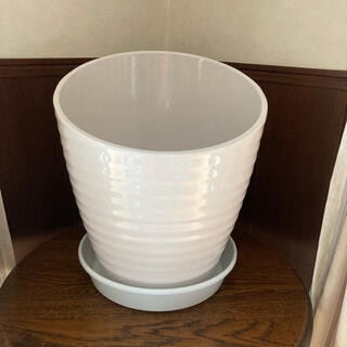 植木鉢 鉢底深皿 セット(プランター)