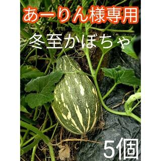 【完全無農薬】 とろける美味しさ 完熟 冬至かぼちゃ めちゃ甘 糖度20度以上(野菜)