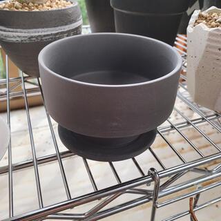 鉢 植木鉢 プランター 下皿付き(プランター)