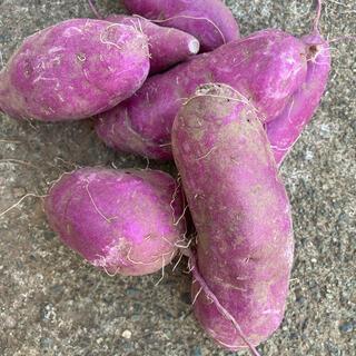 パープルスイート 紫芋3kg(野菜)