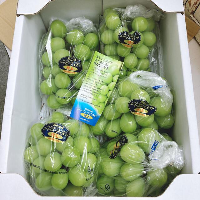 岡山県産 晴王 シャインマスカット 食品/飲料/酒の食品(フルーツ)の商品写真